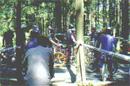 マウンテンバイクコース